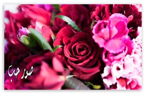 18bf89906 أجمل قصائد ياسر التويرجي , اشعار التويرجي مكتوبة شعر بالعامية - شوف ...