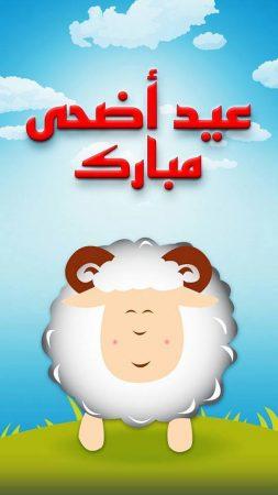 صور عيدالأضحي المبارك (1)
